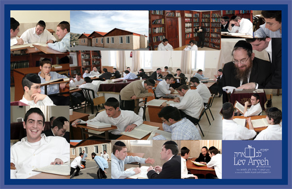 Lev Aryeh Collage
